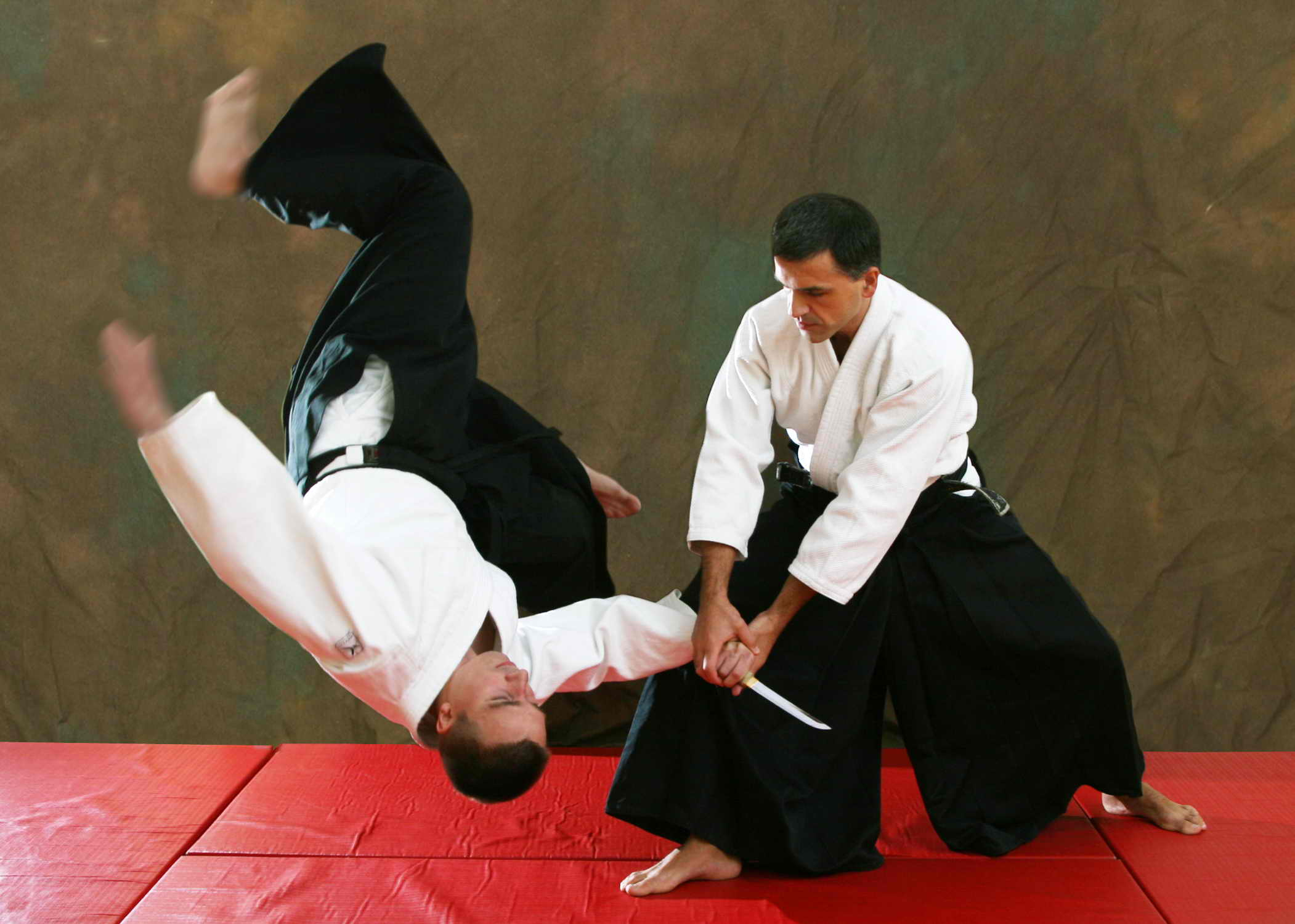 Best Martial Arts for Street Fighting - Akido